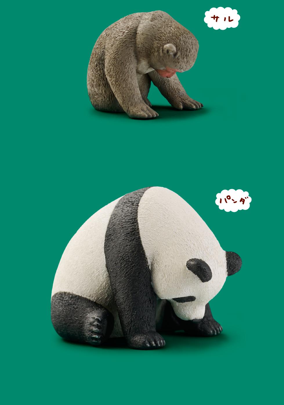 Zoo5 03
