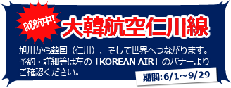 korean-air_startimg