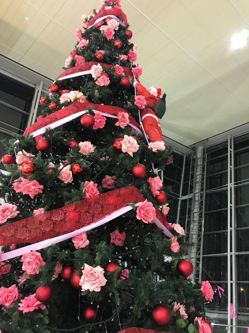 クリスマスツリー点灯式2019④